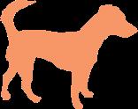 orangedog